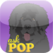 Ask POP: FREE Version